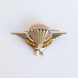 Brevet militaire Para - Métallique - attache épingle