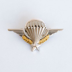 Brevet militaire Para - Métallique - attache pin's